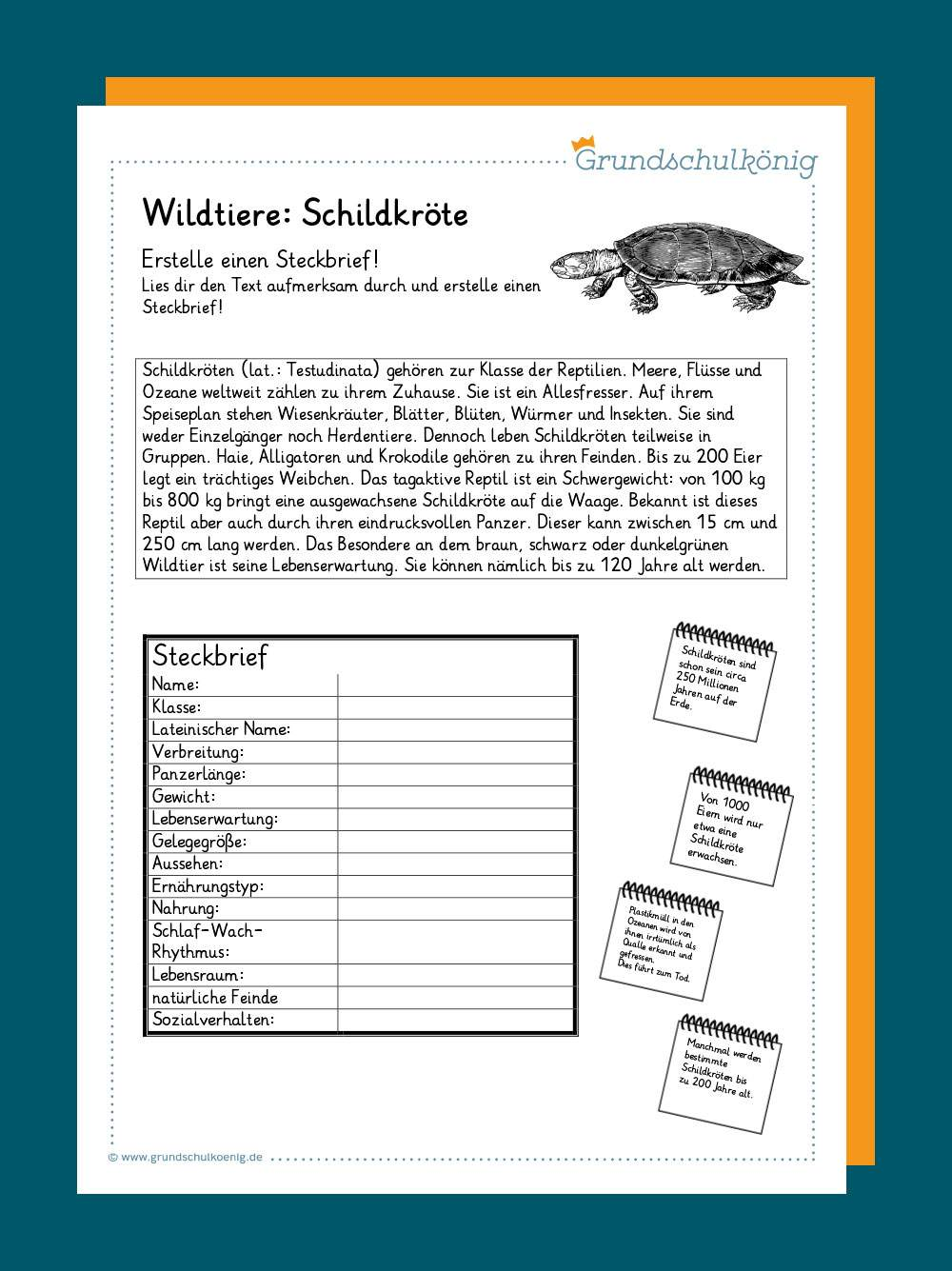 Download Arbeitsblätter Musik Grundschule